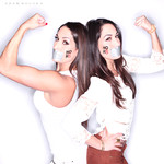 WWE Divas Nikki and Brie Bella