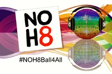 %23noh8ball4all